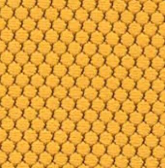 Bloom Honey
